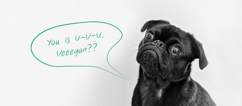 Stigma Around Veganism